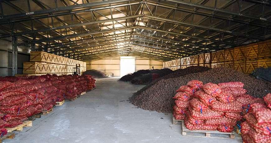 Potato storage