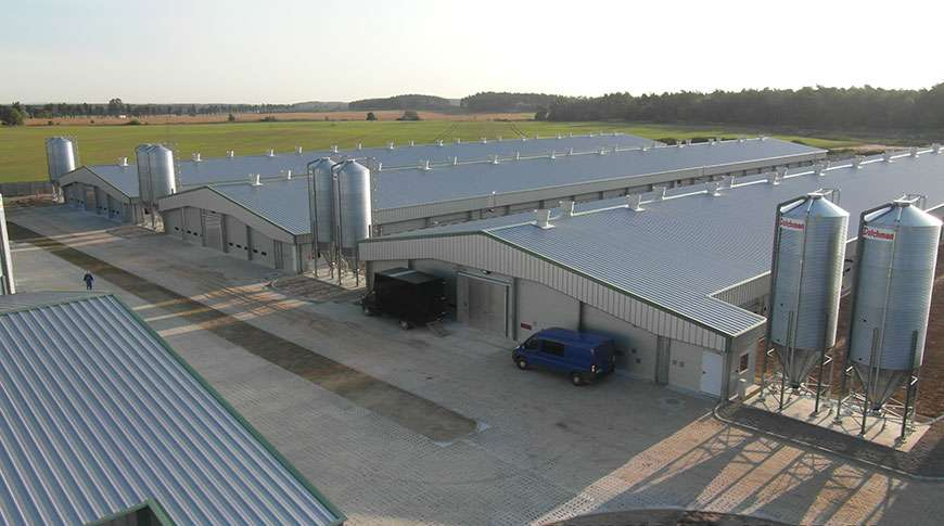 livestock breeding farms buildings prefabricated