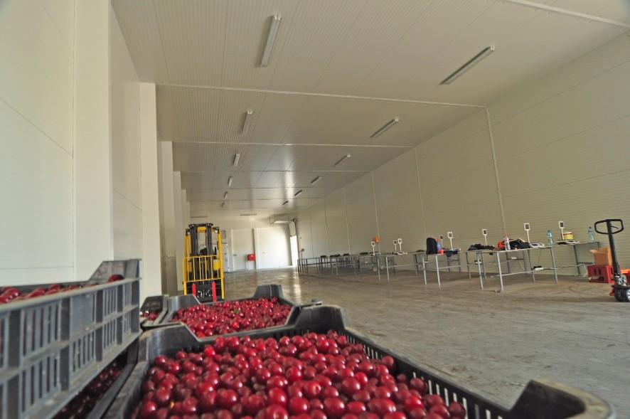 Frisomat-Gemüselagerung